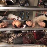 Shogun World Heads